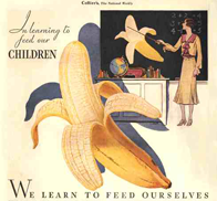 Learn about bananas